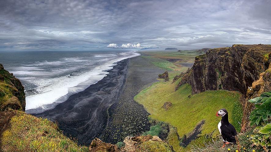 Izland-sziklafal-puffinnal