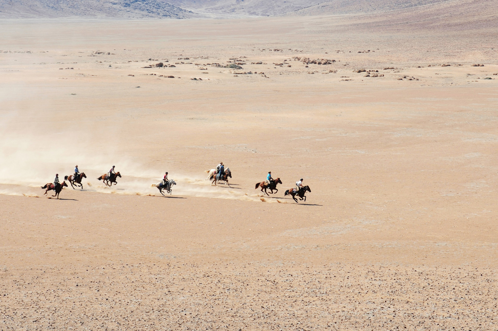 lovas_szafari, Afrika